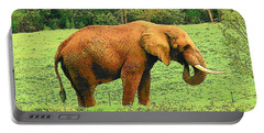 Portable Battery Charger featuring the photograph Elephant by Rodney Lee Williams