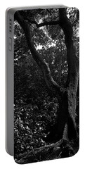 Portable Battery Charger featuring the photograph Elizabethan Gardens Tree In B And W by Greg Reed