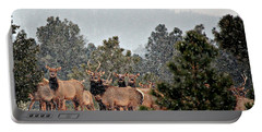 Portable Battery Charger featuring the photograph Elk In The Snowing Open by Barbara Chichester