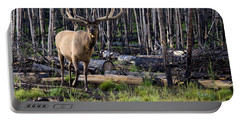 Elk In The Woods Portable Battery Charger