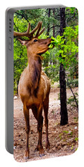 Portable Battery Charger featuring the photograph Elk - Mather Grand Canyon by Bob and Nadine Johnston
