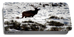 Portable Battery Charger featuring the photograph Elk Silhouette by Sharon Elliott