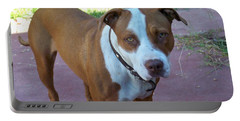 Emma The Pitbull Dog Portable Battery Charger