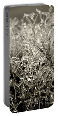 Encased In Ice IIi Portable Battery Charger by Bonnie Myszka