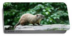 Enter Groundhog Portable Battery Charger by Neal Eslinger