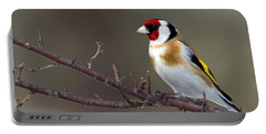 European Goldfinch  Portable Battery Charger