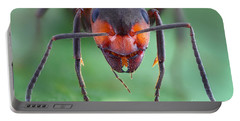 European Red Wood Ant Portable Battery Charger by Matthias Lenke