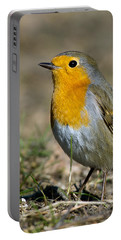 European Robin Portable Battery Charger by Torbjorn Swenelius