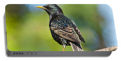 European Starling In A Tree Portable Battery Charger