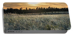 Evening Grasses In The Black Hills Portable Battery Charger