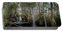 Everglades Swamp-1 Portable Battery Charger