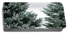 Evergreens Portable Battery Charger