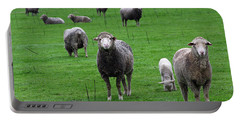 Ewes And Lambs Portable Battery Charger