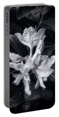 Exbury Azalea In Black And White Portable Battery Charger by Louise Kumpf