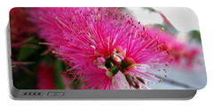 Portable Battery Charger featuring the photograph Exquisite Pink Bottle Brush by Leanne Seymour