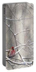 Eyeing The Feeder Alaskan Redpoll In Winter Portable Battery Charger