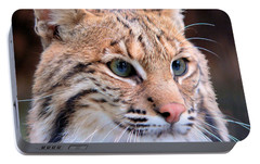 Portable Battery Charger featuring the photograph Eyes Of A Lynx by Rosalie Scanlon