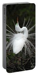 Fabulous Feathers Portable Battery Charger
