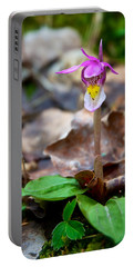 Fairy Slipper Orchid Portable Battery Charger