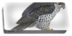 Falcon Portable Battery Charger