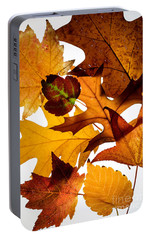 Portable Battery Charger featuring the photograph Fall Bounty by Rebecca Cozart