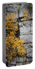 Fall Foliage Colors 01 Portable Battery Charger