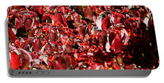 Fall Foliage Colors 08 Portable Battery Charger
