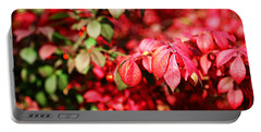 Fall Foliage Colors 10 Portable Battery Charger
