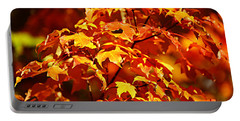 Fall Foliage Colors 14 Portable Battery Charger