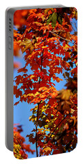 Fall Foliage Colors 15 Portable Battery Charger