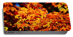 Fall Foliage Colors 16 Portable Battery Charger