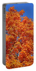 Fall Foliage Colors 18 Portable Battery Charger