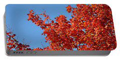 Fall Foliage Colors 20 Portable Battery Charger