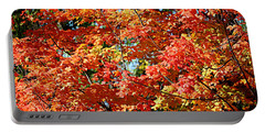 Fall Foliage Colors 22 Portable Battery Charger