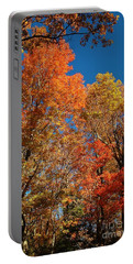 Portable Battery Charger featuring the photograph Fall Foliage by Patrick Shupert