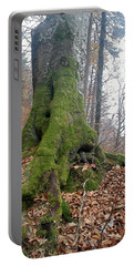 Portable Battery Charger featuring the photograph Fall In Burgdorf by Felicia Tica