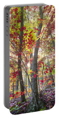 Fall Laser Beams Portable Battery Charger
