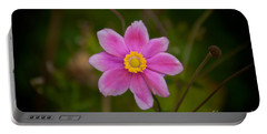 Fall Pink Daisy Portable Battery Charger