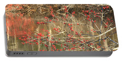Portable Battery Charger featuring the photograph Fall Upon The Water by Bruce Carpenter