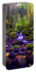 Fallen Leaves On The Rocks Portable Battery Charger