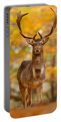 Fallow Deer In Autumn Forest Portable Battery Charger by Roeselien Raimond