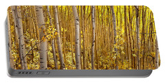 Fall's Golden Light Portable Battery Charger by Steven Reed
