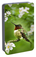 Fauna And Flora - Hummingbird With Flowers Portable Battery Charger by Christina Rollo