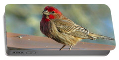 Feathered Friend Portable Battery Charger