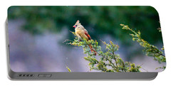 Female Cardinal In Snow Portable Battery Charger by Eleanor Abramson