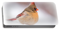 Female Northern Cardinal Portable Battery Charger