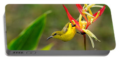 Female Olive Backed Sunbird Clings To Heliconia Plant Flower Singapore Portable Battery Charger