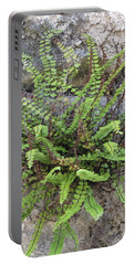 Fern Tendrils  Portable Battery Charger
