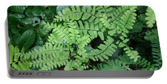Ferns-iii Portable Battery Charger