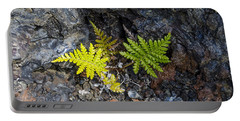 Ferns In Volcanic Rock Portable Battery Charger